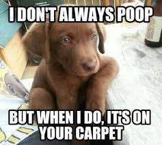 Amusing Memes to Make You Laugh out Loud (20 pics) | Imgism via Relatably.com