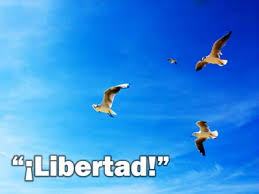 Resultado de imagen para libertad