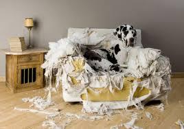 Znalezione obrazy dla zapytania bałagan w mieszkaniu