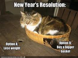 Image result for funny new year's resolutions
