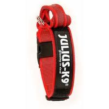 <b>Julius</b>-<b>K9 ошейник для собак</b> Color & Gray, 47-67 см/5 см ...