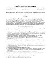 doc good s resume summary it engineer example page  inside s resume summary