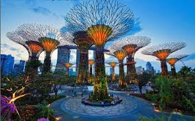 Image result for singapore bay garden