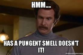 Hmm.... Has a pungent smell doesn't it! - Ron Burgundy I am not ... via Relatably.com