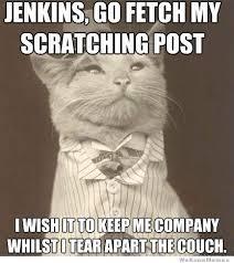 Best Of The Aristocat Meme | WeKnowMemes via Relatably.com