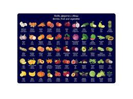 Электросушилки для овощей фруктов грибов - Tour Trading