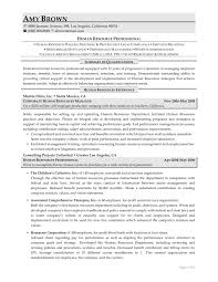 resume professional writers review cipanewsletter examples of resumes professional writing resume sample for 87