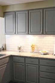 Grey Stained Kitchen Cabinets 1000 Images About Kitchen On Pinterest Shelves Grey Wood And