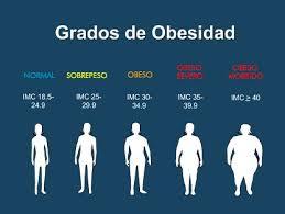 Resultado de imagen de Dibujos de obesidad