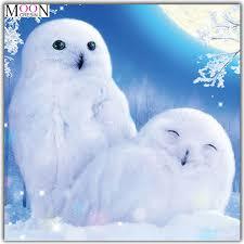 <b>MOONCRESIN Diy Diamond Painting</b> Cross Stitch Two White Owls ...