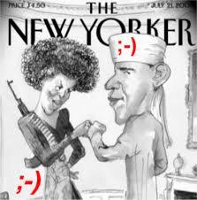 Image result for obama satire