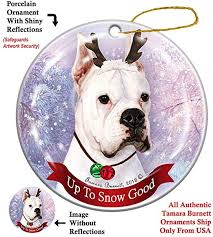 Holiday Pet Gifts Boxer White Cropped Ears Reindeer ... - Amazon.com
