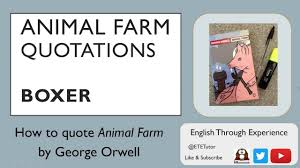 seconds animal farm boxer great for gcse 60 seconds animal farm boxer great for gcse