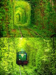 Image result for tunnel of love ukraine train