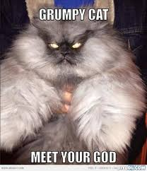 grumpy cat meme | grumpy-cat-meme-generator-grumpy-cat-meet-your ... via Relatably.com
