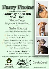 safe hands animal rescue safe hands animal rescue is dedicated safe hands animal rescue safe hands animal rescue is dedicated to saving lives and finding forever homes for stray abandoned and surrendered dogs in high