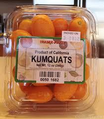 Kumquat (Fortunella margarita{