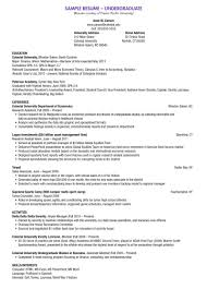 combination resume templates  seangarrette cocombination