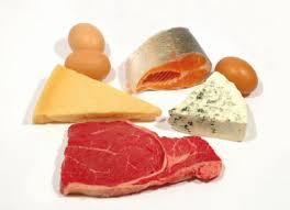 Resultado de imagem para fontes de proteinas