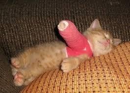 Broken arm - Imgur via Relatably.com