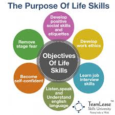 skills infographics ly the main aim of learning life skills infographic