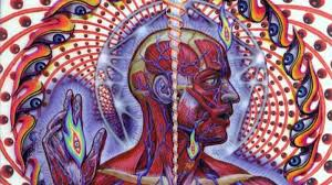 10 Things You Didn't Know About <b>Tool's</b> '<b>Lateralus</b>'   Revolver