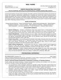 resume for independent s consultant cipanewsletter of business planning resume