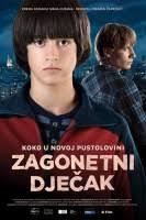 Zagonetni dječak (2013) - 3-zagonetni-djecak