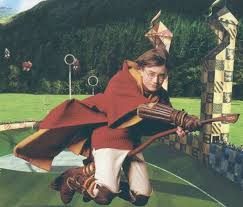 Image result for harry potter quidditch
