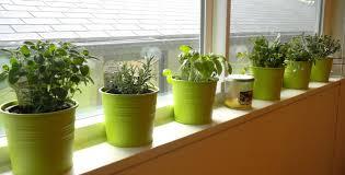 Kitchen Herb Garden Design Home Decorating Ideas Home Decorating Ideas Thearmchairs