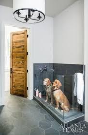1034 Best <b>Dogs</b> images in 2019   <b>Dogs</b>, Cute <b>animals</b>, <b>Husky</b> puppy