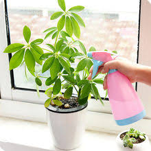 Compare prices on <b>Water Spray Watering</b> Can - shop the best value ...