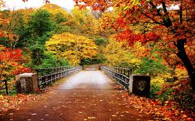 Image result for Autumn in twin falls idaho