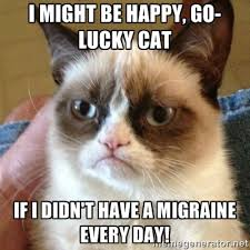 I might be happy, go-lucky cat If I didn't have a migraine every ... via Relatably.com