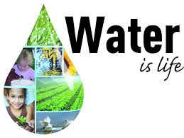 water in life essay water is our life blood essay   buy it now bing save