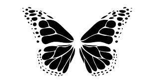 Black Butterfly - WIDE ANGLE YOUTH MEDIA INC