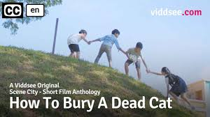 How To Bury A <b>Dead Cat</b> - Will This Cat Make It To Heaven ...
