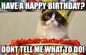 Grumpy Cat Birthday on Pinterest   Grumpy Cat Cartoon, Grumpy Cat ... via Relatably.com