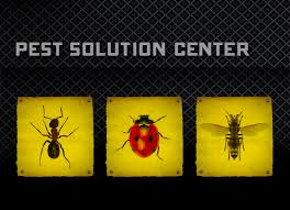 <b>Black Flag</b> Insect and Pest Control | <b>Black Flag</b>