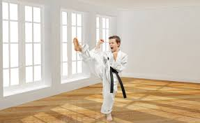premier martial arts north olmsted north olmsted