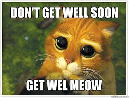 funny get well soon images | Funny Get Well Soon Memes ... via Relatably.com