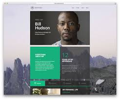 30 best vcard wordpress themes 2016 for your online resume and massivedynamic vcard wordpress website template