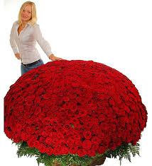 <b>Композиция из 1001</b> розы Сенсация, Руза