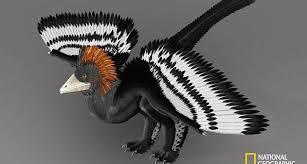 Resultado de imagem para dinossauro com penas