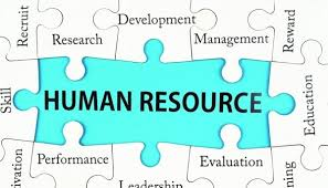 human resources development and management  career development    human resources development and management  career development write your essay for you
