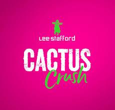 Rick Stevenson Design | Lee Stafford Cactus Crush Packaging - RSD