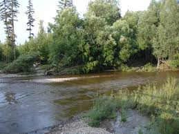 Río Amgun