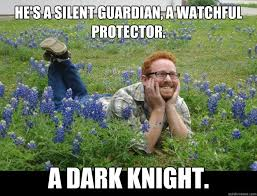 He's a silent guardian, a watchful protector. A dark knight ... via Relatably.com