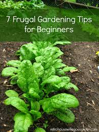 8 ways to save money using flyers retro housewife goes green reducing food waste · 7 frugal gardening tips for beginners