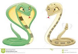 Resultado de imagem para vibora serpente